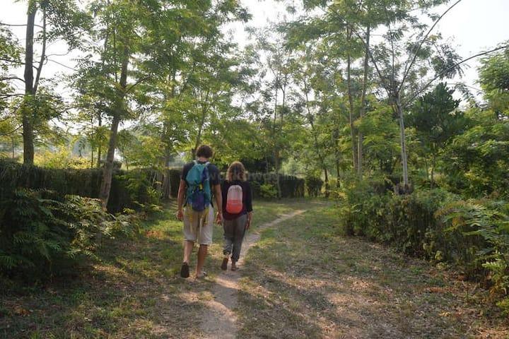 Eco Hub Africa Botanical Gardens, Cottages & Tours