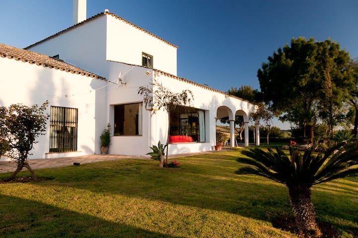 Amazing villa with private pool