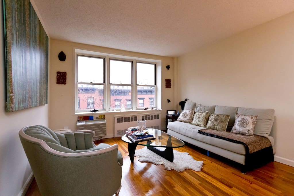Big 1 bedroom apt very central apartments for rent in New york one bedroom apartments for rent