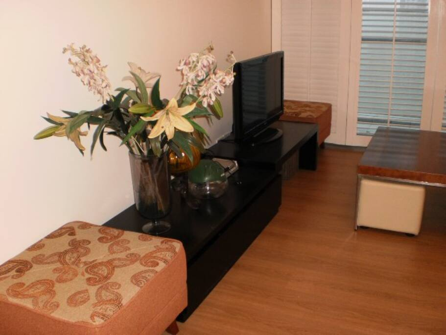 Living Area details