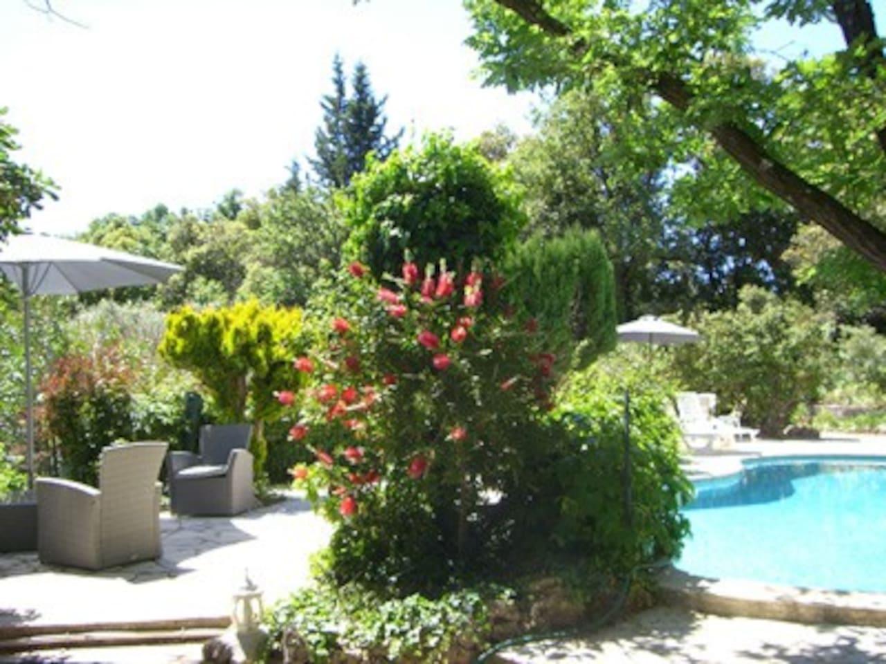 terrace with garden furnitures