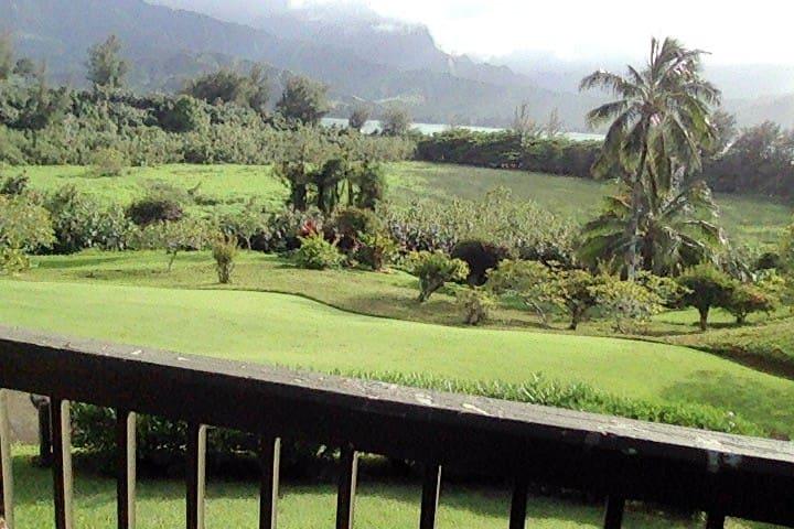 LAST minute,Hanalei Bay Resort, 1/2, LEGAL,views