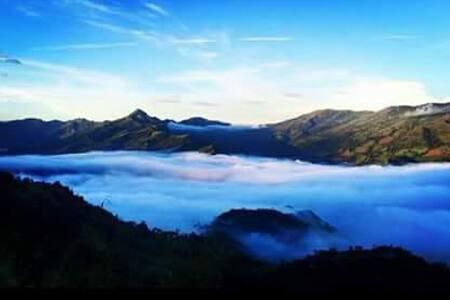 Granja Loma Linda