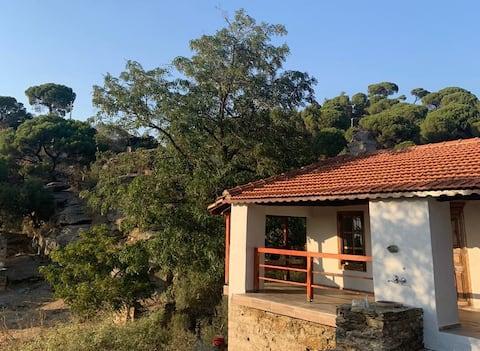 Aydın Söke'de dağ ve deniz manzaralı antik köy evi