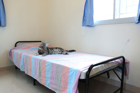 A private room in a village house is available till March 2015 for rental purpose. Pricing varies depending on duration of stay. I live in the same house in a separate room. There are two cats running in the house if you are an animal lover.