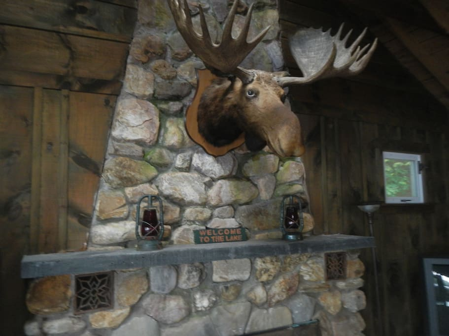 our moose has been on the fireplace for  more than 55 years