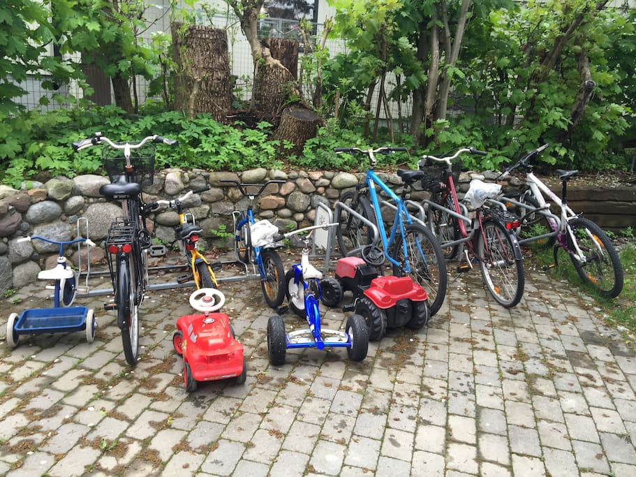 Do you like bikes? We have one for mom, dad, your children and even a carrier that can fit two children for those who are too small to bike on their own. We also have helmets of course, as you gotta protect those precious heads.