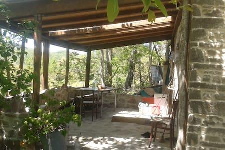 CASA in MONTAGNA nel CASENTINO - อาเรซโซ่ - บ้าน