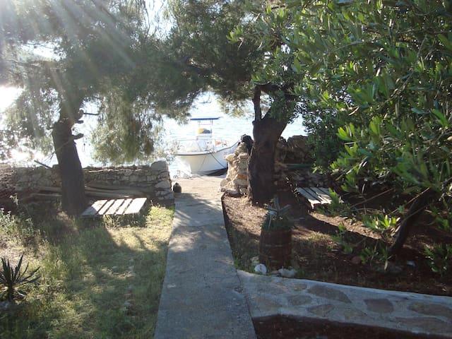 Robinson Holiday on Žut,Kornati - มูร์เตอร์