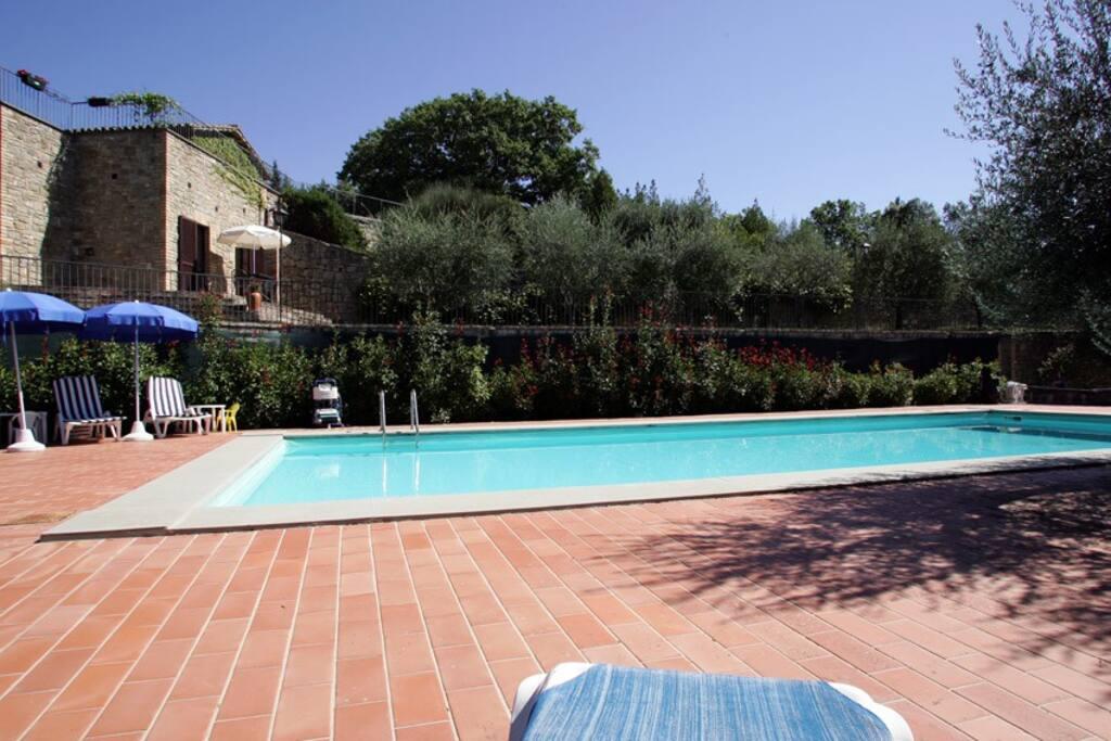 Il kiwi appartamenti in affitto a valfabbrica umbria for Piscina torello