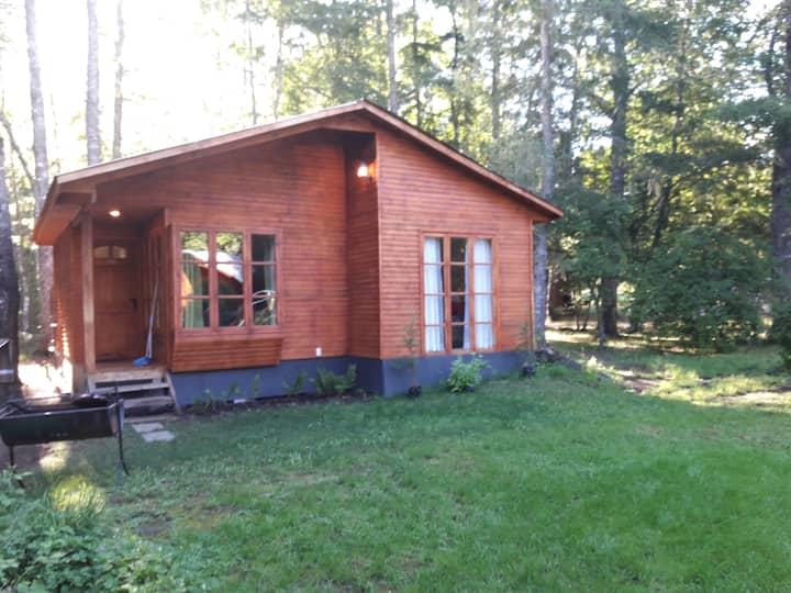 Cabaña Villarrica nueva 6 personas parque natural