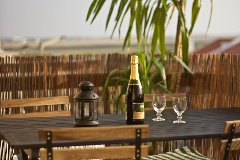Enjoy the Sea view,  the dunes and the green fields, chilling in the sun at the front balcony.
