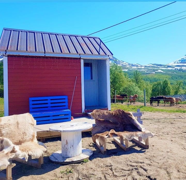 Arctic Cabin Snolke
