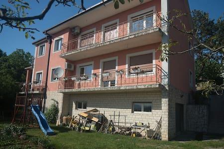 Apartment Galjanić - Buzdohanj - アパート