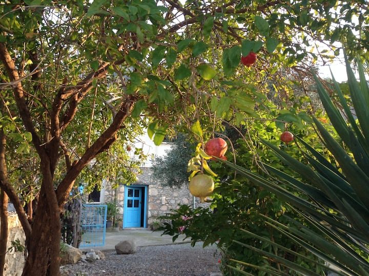 Northern Cyprus-Traditional Cottage -Karsiyaka