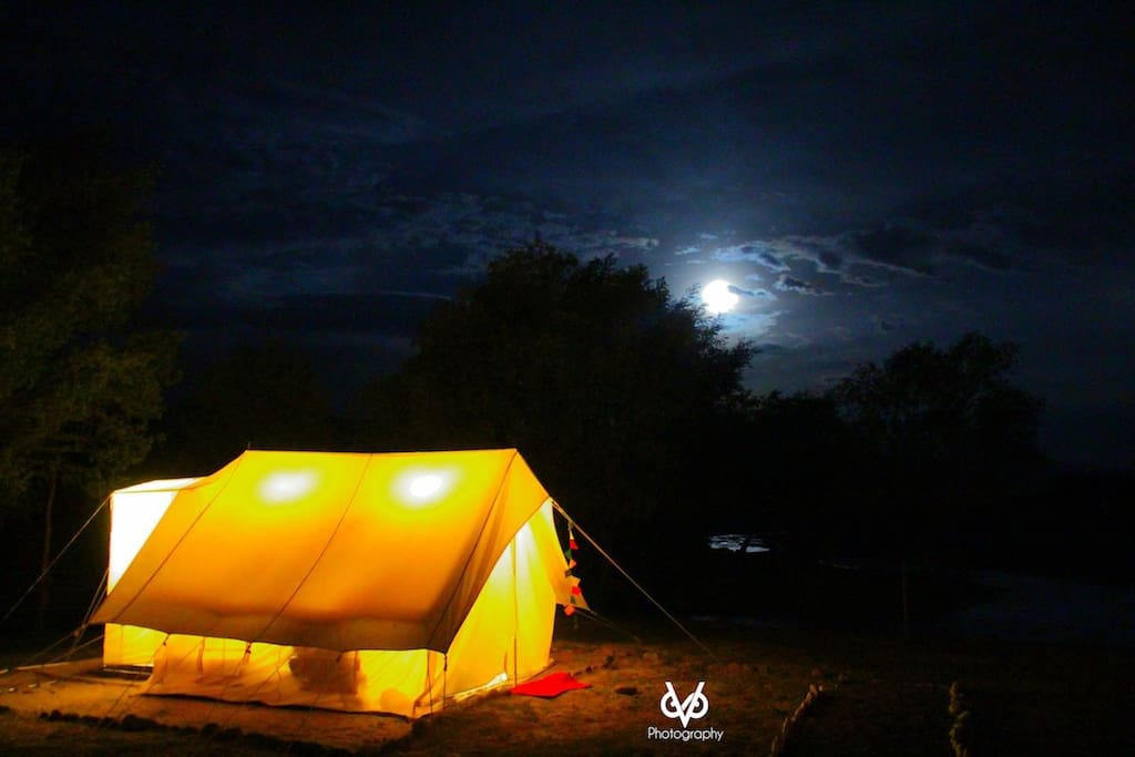 Night view of tents and moon