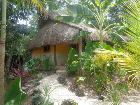 Family cavaña in the Jungle