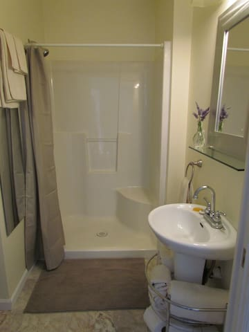 Walk-in shower with seat in bathroom.