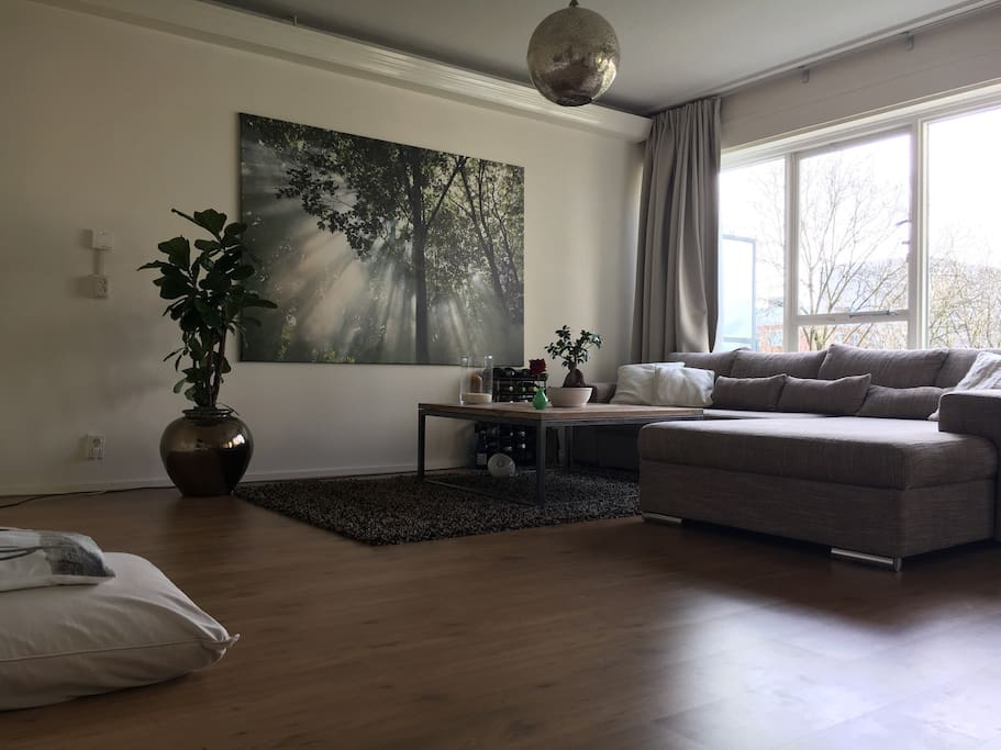 New picture of the living room (winter time)