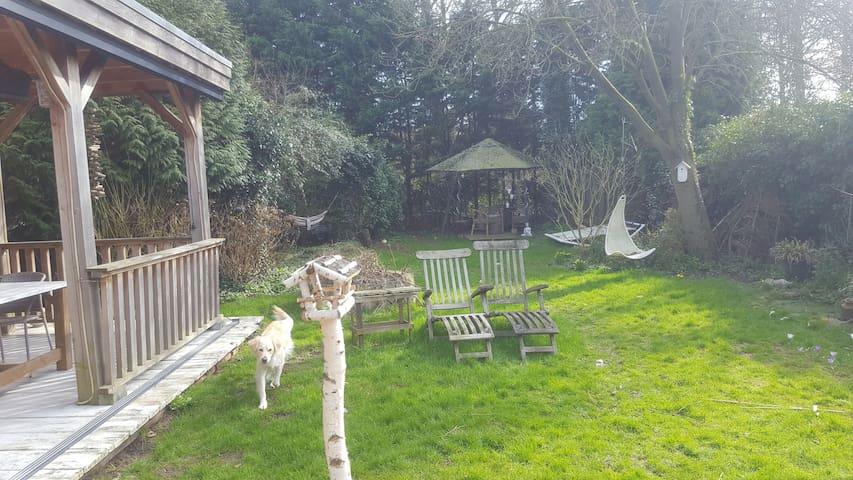 FORESTroom @ Zeeland - Terneuzen