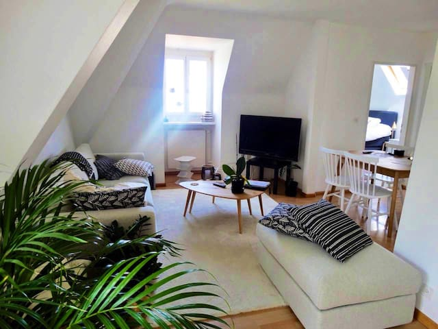 Nice apartment (65m2) 13 min away from Baselworld