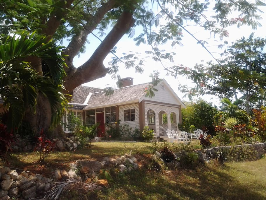 June Plum King Bed Room Bed And Breakfasts For Rent In Mandeville Manchester Parish Jamaica