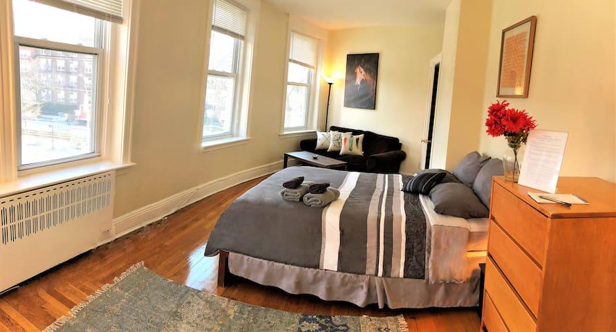 Bright Spacious Private Bedroom in Coolidge Corner