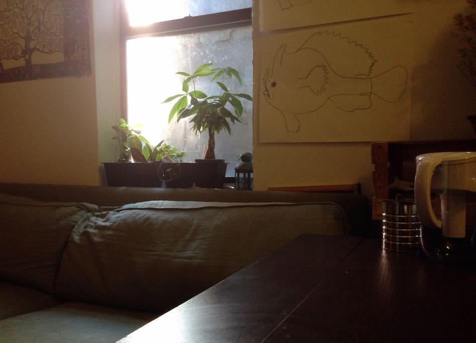 A sunny morning in our living room