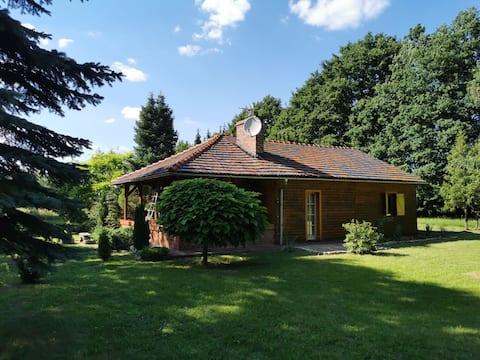 Domek nad pieknym stawem na dużej zielonej działce