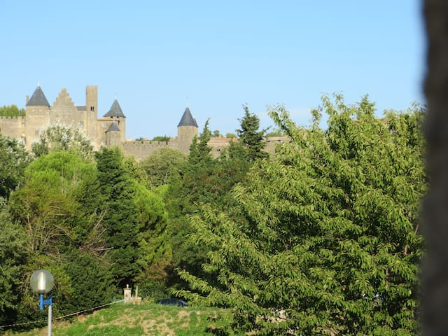 House HERITAGE AND NATURE*** CARCASSONNE - Carcassonne - House