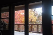Fall view from Family Room