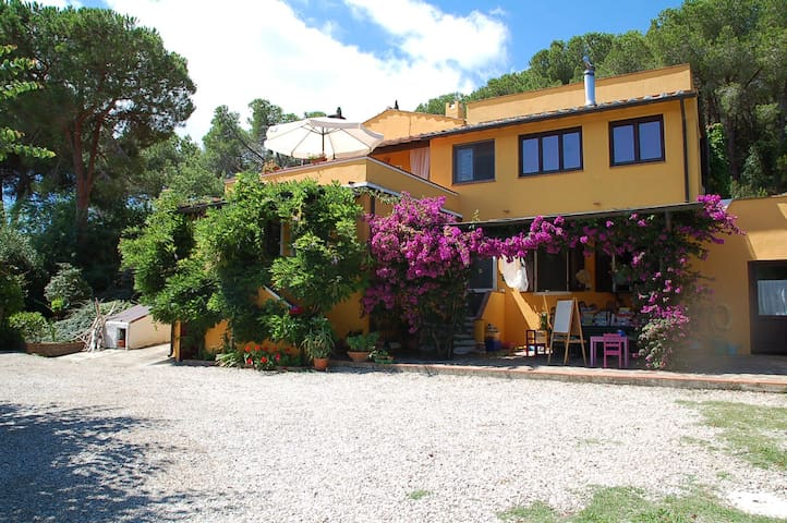 "b&b ""due papere"" immerso nel verde - Portoferraio - Bed & Breakfast"