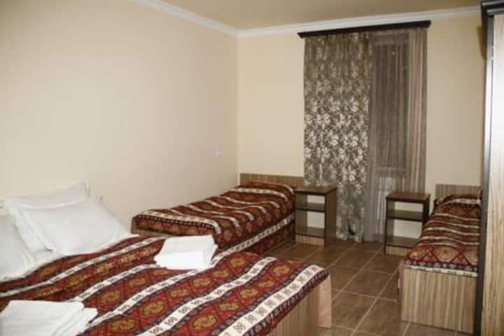 Zanger Hotel