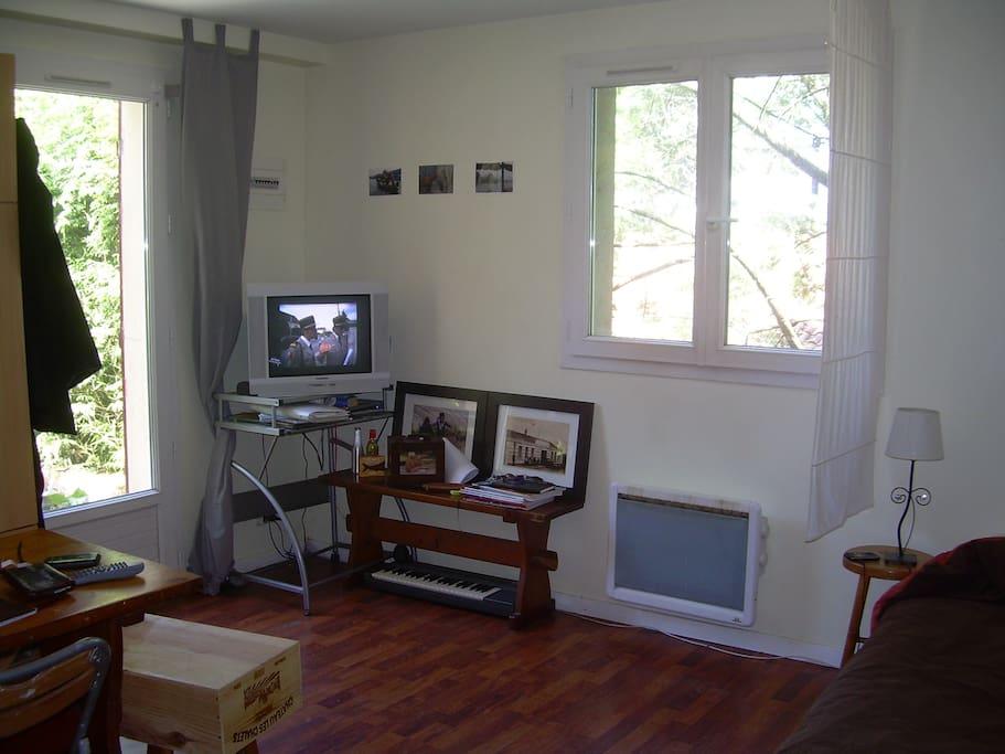 salle principale.... avec le lit à droite, table, chaises, télé, armoire et cuisine à l'américaine.