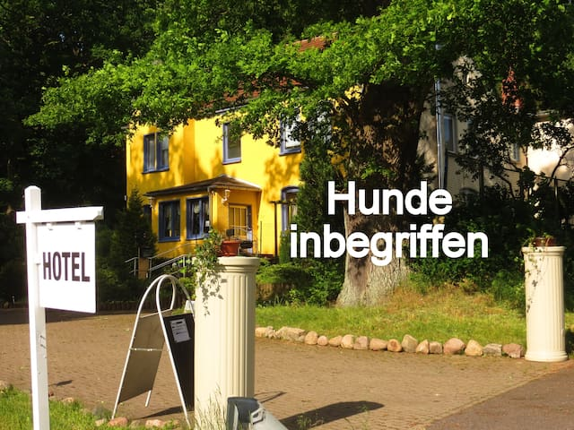 Natur pur, Hund OK, Zimmer Du, WC, Sat-TV, WLAN - Sternberg - Haus