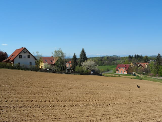 "A ""home"" in Southern Styria - Altenberg bei Leibnitz - Andre"
