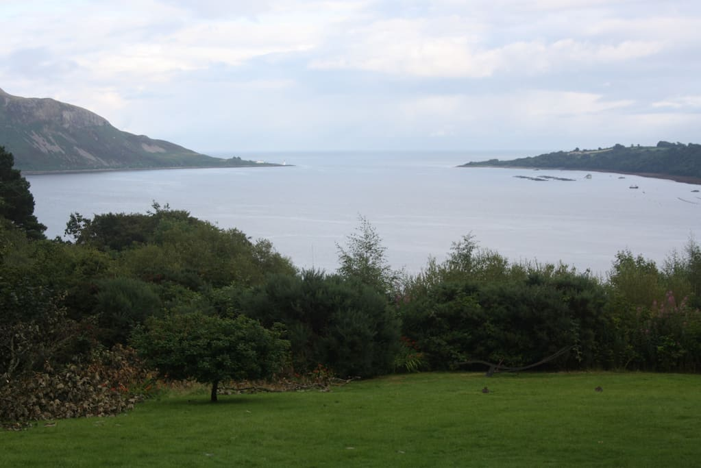 View from the front garden