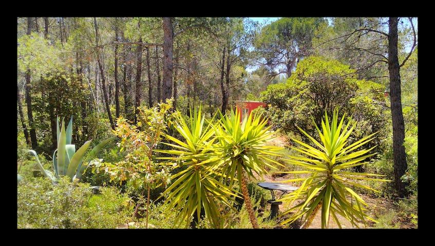 Un bungalow dans la nature