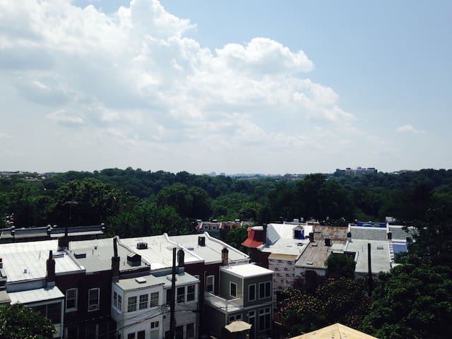 View of Mt. Pleasant neighborhood; you can see flights to DCA and view of Virginia