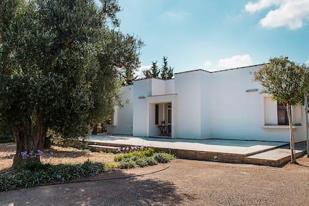 Villa nella campagna salentina - Nardò - Villa