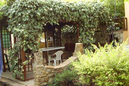 casa con giardino, animali ammessi - Filare-boschetto-miniera-Gavorrano - Dům