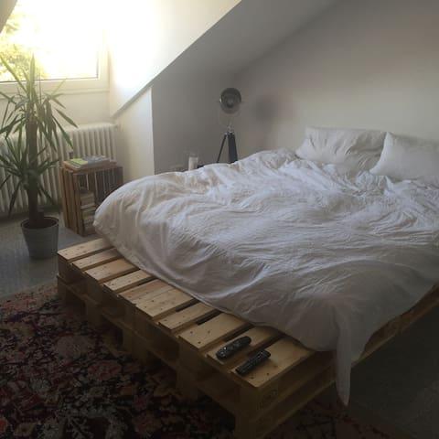Schicke 1 Zimmer Wohnung - Freiburg im Breisgau - Wohnung