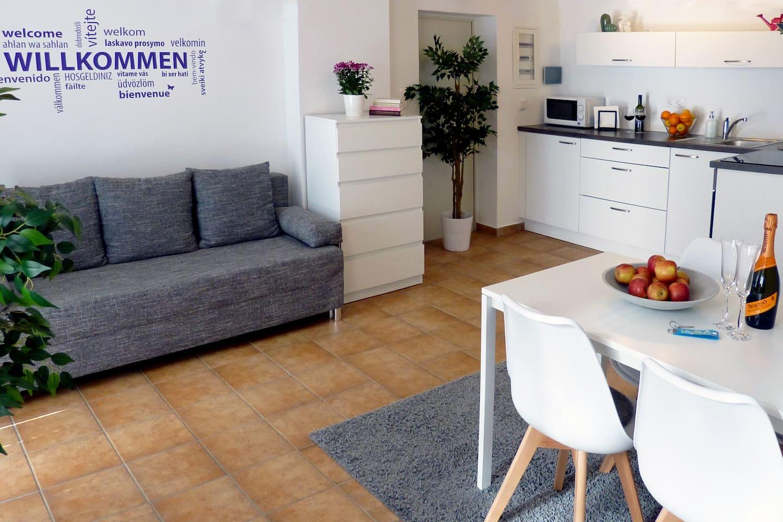 Erdgeschoss mit Schlafsofa, Essbereich und Küche.