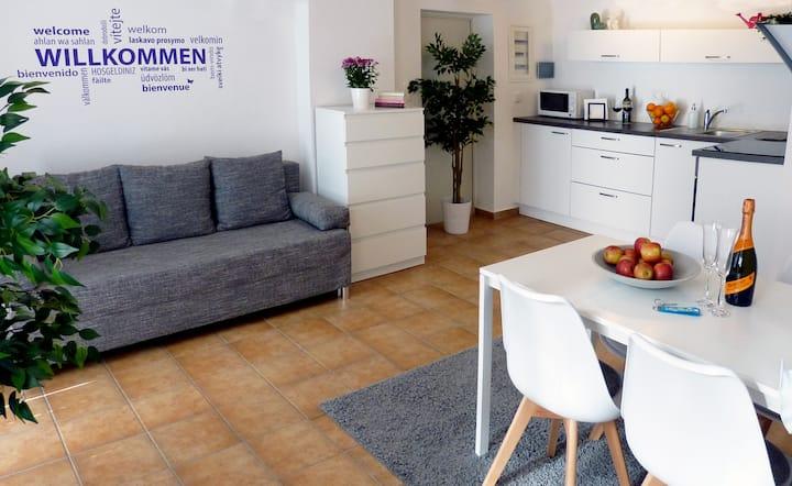 Cosy apartment in Seewalchen / Austria