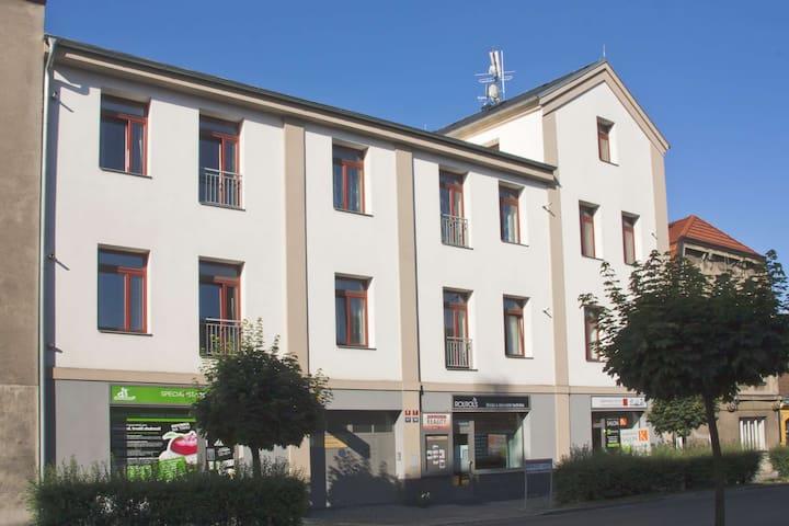 Apartmán s 1 ložnicí a kuchyní - Poděbrady - Apartmen