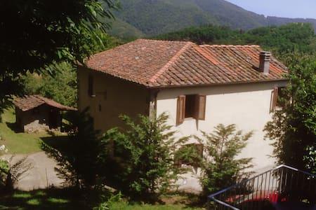 Casa San Moscato, Tuscan holiday home - Pariana