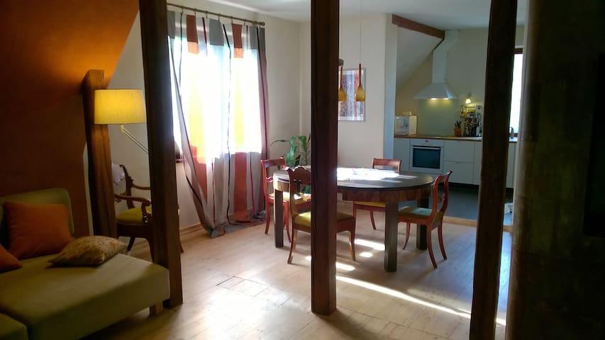 Private apartment +garden +sauna in the citycentre - Tartu - Casa