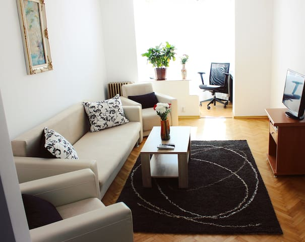 Alex's Ultracentral Apartment with 2 rooms - Temešvár - Byt