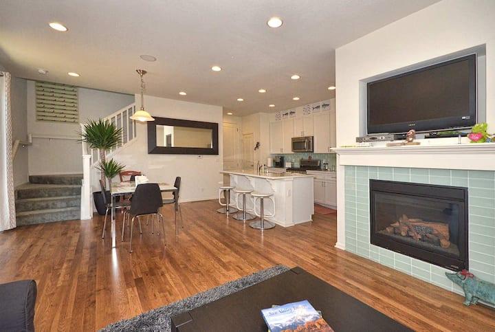 Brand New Modern Stapleton Home