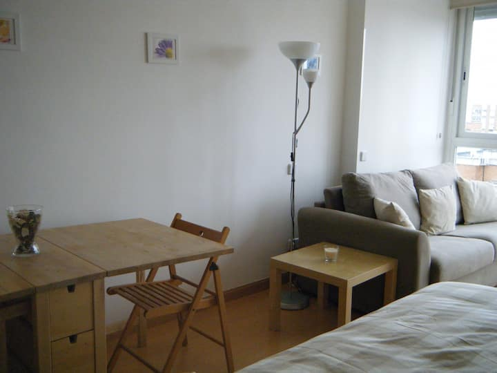 Studio apartment Chamartin station